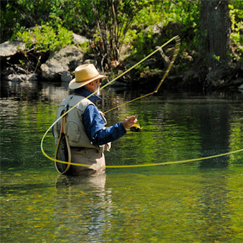 Toccoa house properties for Toccoa river fishing